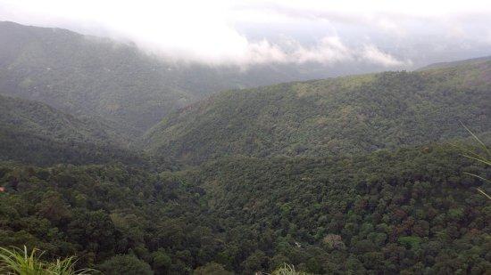 Kuttikkanam, India: View During Naturewalk