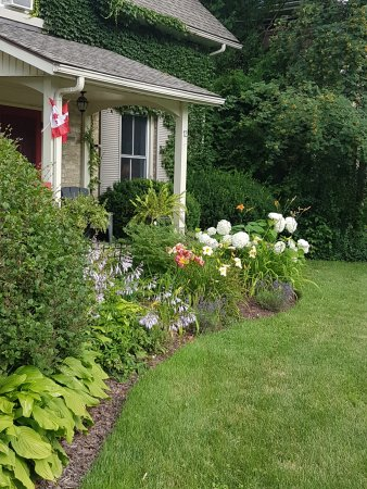 Bayfield, Canada : Front garden