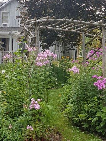 Bayfield, Canada : Back garden