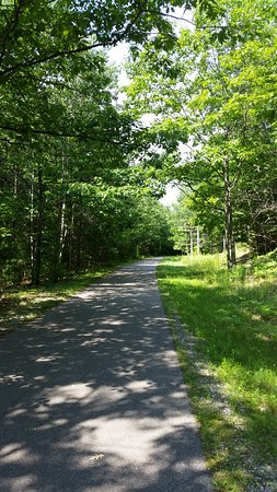 Petoskey, MI: Trail