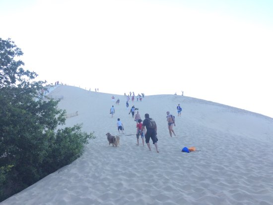 Great Dune of Pilat