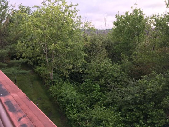 Dedham, MA: View from suite balcony
