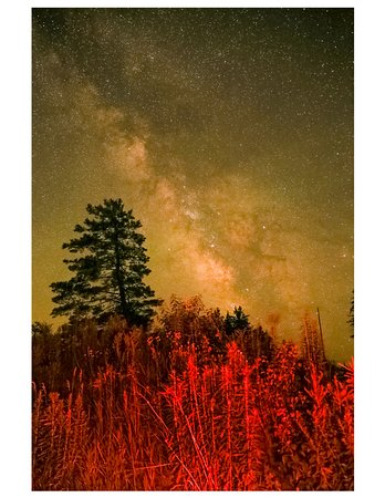 Coudersport, PA: Milky Way Shot from Cherry Springs State Park, PA 18 Jul 2017