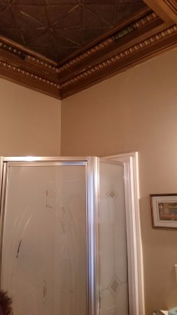 The Sayre Mansion Inn: room 20 coiffured ceiling in bath too