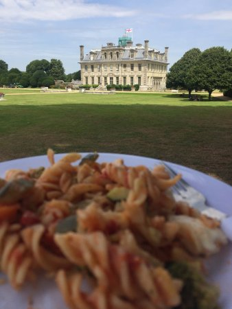 Wimborne Minster, UK: Picnic with a view of Kingston Lacy Manor House