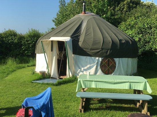 Newton Poppleford, UK: Our Yurt