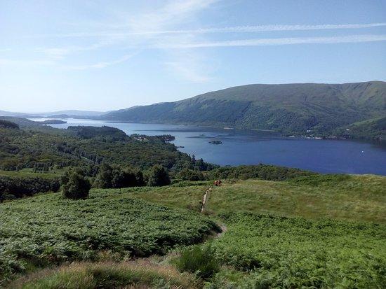 Rowardennan, UK: View of Loch Lomond partway up Ptarmigan Path