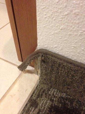 โคลัมเบีย, แมรี่แลนด์: torn carpet at the bathroom door