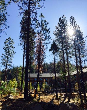 Groveland, Califórnia: Beautiful Rush Creek Lodge