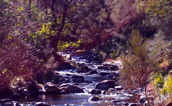 Gloucester, Australien: Barrington River
