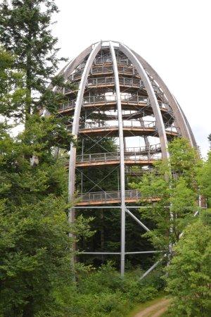 Grafenau, ألمانيا: Baumwipfelpfad