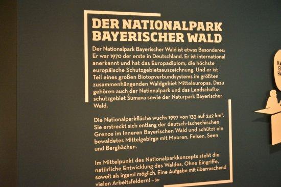 Grafenau, ألمانيا: Wald sign