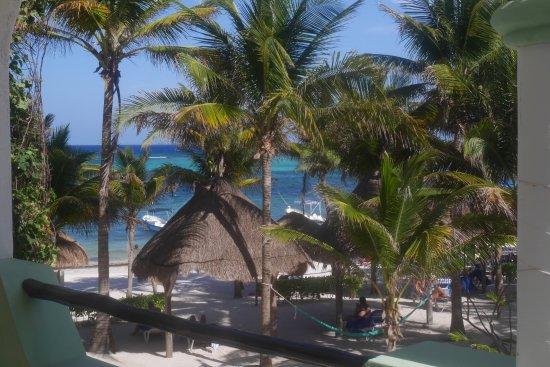 Hotel Akumal Caribe: vue de la chambre 410 (tout le front de mer aussi)