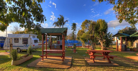 BIG4 Toowoomba Garden City Holiday Park: BBQ and Picnic area by the pool with multiple herb gardens