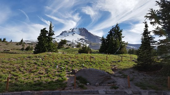 Timberline Lodge, OR: View of Mount Hood from the back patio of the lodge