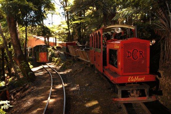 Coromandel, Nuova Zelanda: This locomotive, 'Elephant', was built in 1979.