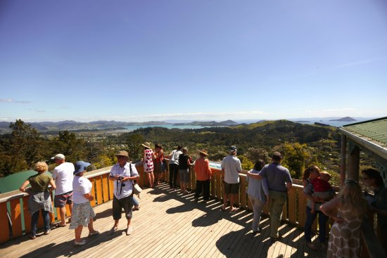 Coromandel, New Zealand: The superb view from the EyeFull Tower.