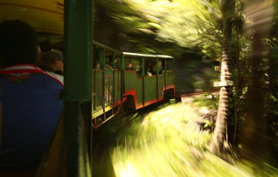 Coromandel, New Zealand: Who doesn't love train travel?