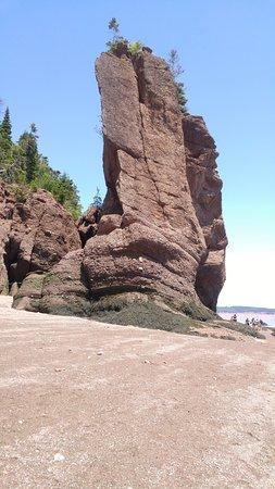 Hopewell Cape, Canada: hopewell rocks