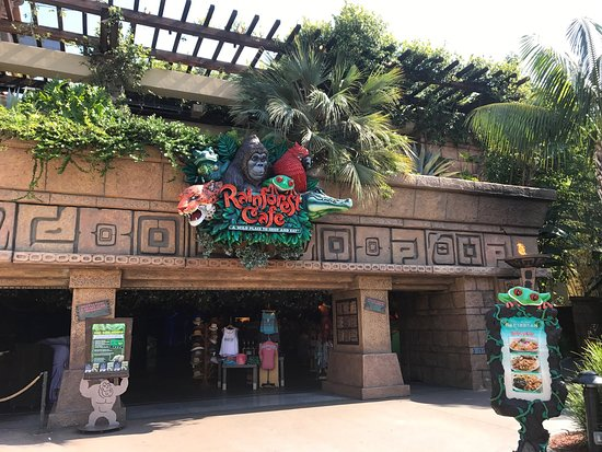 Rainforest Cafe Anaheim Ca Menu Prices