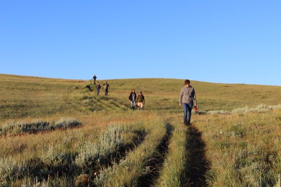 7D Ranch: Sunrise Hike