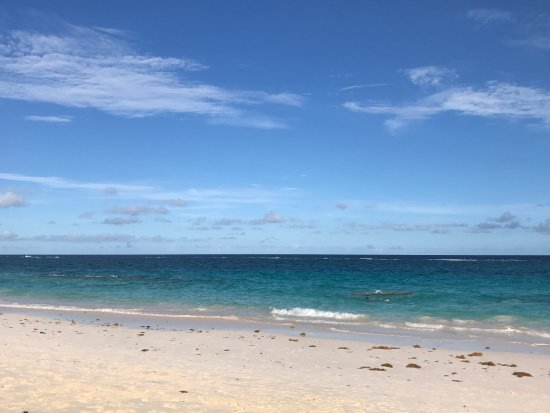 Elbow Beach, Bermuda afbeelding