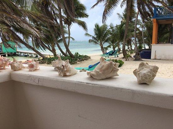 Tranquility Bay Resort: photo1.jpg