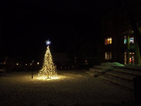 Telluride, CO: Christmas tree made of old skis