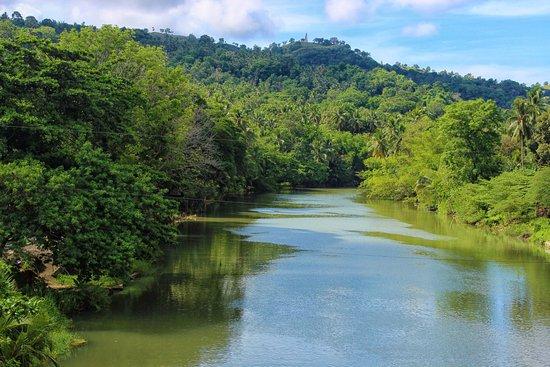 RIVER WATCH FLOATING RESTO: Loboc River
