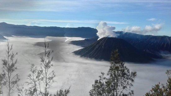 Tulamben, إندونيسيا: IMG-20170511-WA0006_large.jpg