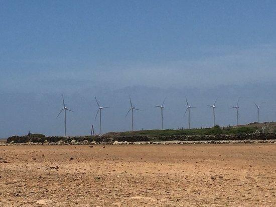 Santa Cruz, Aruba: photo3.jpg