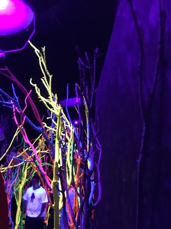 Like an '80s album cover    - Picture of Meow Wolf, Santa Fe