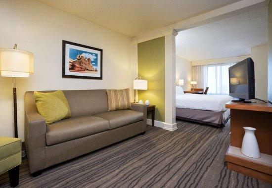 Иден-Прери, Миннесота: King Suite - Living Room
