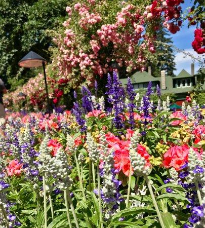 Butchart Gardens: photo2.jpg
