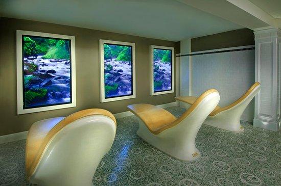 Hot Springs, فيرجينيا: Aqua Thermal Suite