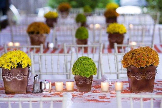 Hot Springs, VA: Wedding