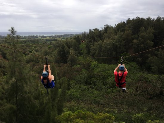 Kahuku, HI: Side by side zip lines