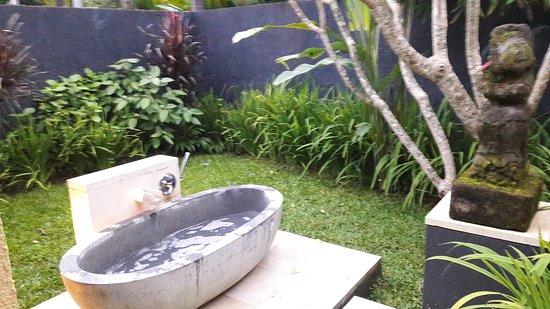Villa Sabandari : 20170720_063641_large.jpg