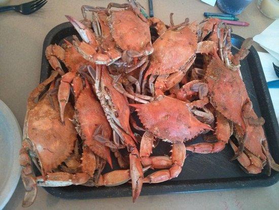 Grasonville, MD: A dozen of crabs!!