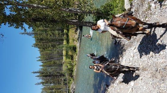 Fernie, Kanada: Fantastic trail riding everyone!
