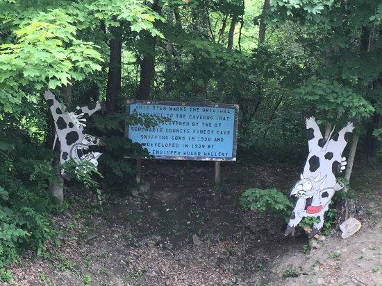 Howes Cave, NY: photo1.jpg