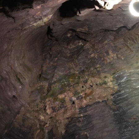 Howes Cave, NY: photo3.jpg