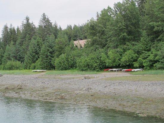 Gustavus, AK: Bartlett Cove