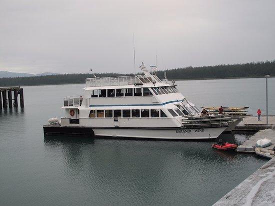 Gustavus, AK: Day boat cruise