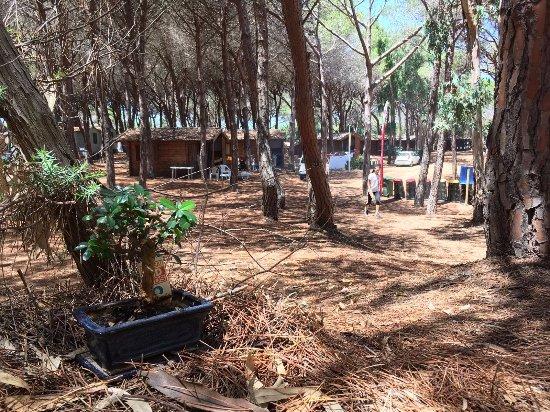 Camping bella sardinia cuglieri recenze a srovn n cen for Arredo ingross 3 dove si trova