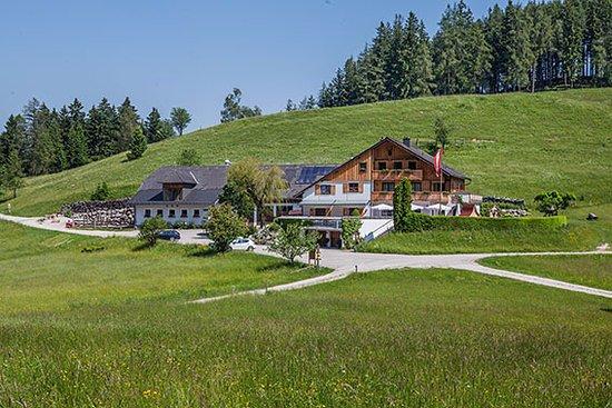 Altmunster, Oostenrijk: Wir liegen umgeben von blühenden Almwiesen und mächtigen Wäldern, abgeschieden von Lärm und Hekt