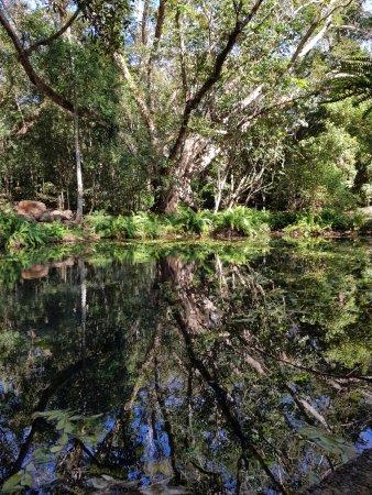 Atherton, Australien: Barron Springs