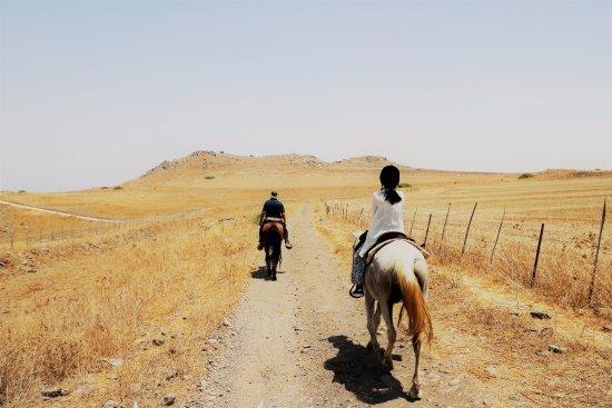 Amirim, Ισραήλ: great view