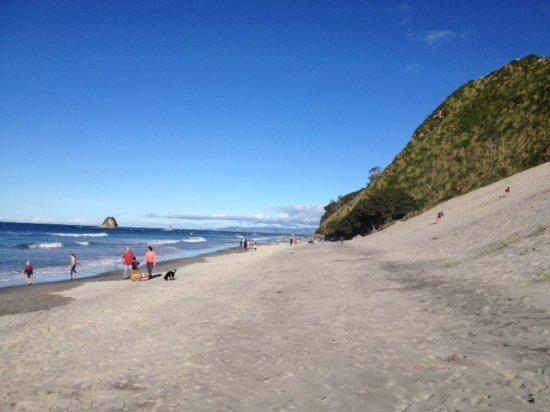 Mangawhai Beach with sand dunes