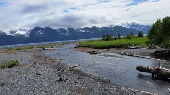 Seward, AK : The creek
